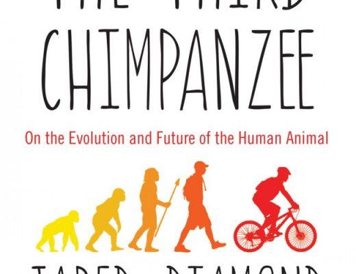 Treti simpanz