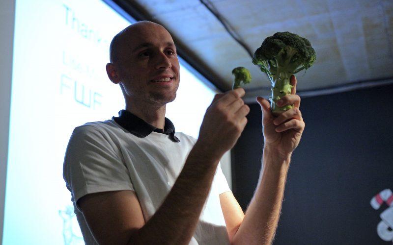 fraktal brokolica